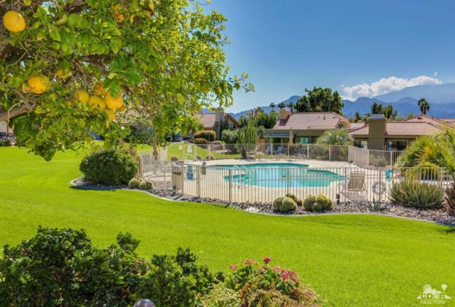 5 Toluca Way, Palm Desert, CA 92260 (MLS #217006946) :: Brad Schmett Real Estate Group