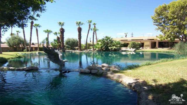 80620 Avenue 40, Indio, CA 92203 (MLS #217023046) :: Brad Schmett Real Estate Group