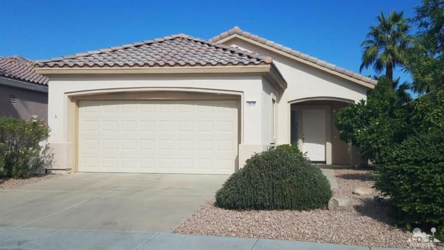 78590 Hampshire Avenue, Palm Desert, CA 92211 (MLS #217032676) :: Brad Schmett Real Estate Group