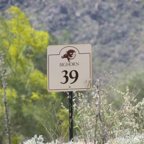 143 Kiva Drive, Palm Desert, CA 92260 (MLS #217033496) :: Brad Schmett Real Estate Group