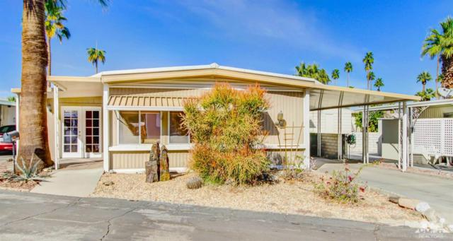 116 Camarillo Street, Palm Springs, CA 92264 (MLS #217034492) :: Brad Schmett Real Estate Group