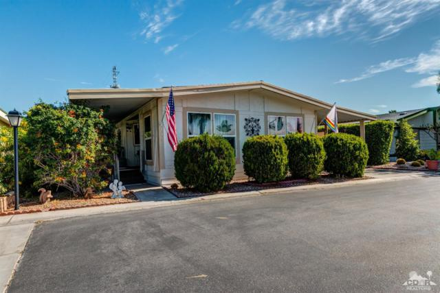 237 Settles Drive, Cathedral City, CA 92234 (MLS #218013036) :: Brad Schmett Real Estate Group