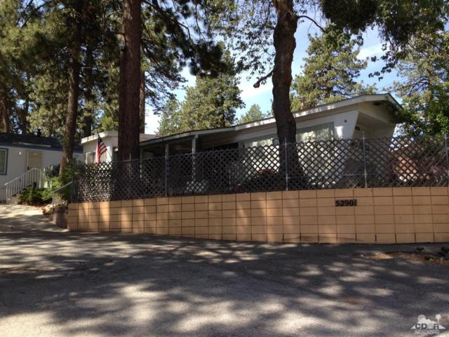 52901 Pine Cove Road #1, Idyllwild, CA 92549 (MLS #218014148) :: Deirdre Coit and Associates