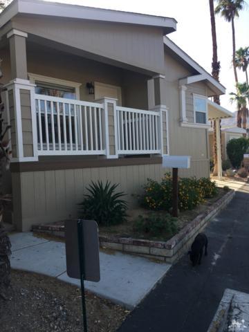 19 Circle A Drive, Palm Desert, CA 92260 (MLS #218015314) :: Hacienda Group Inc