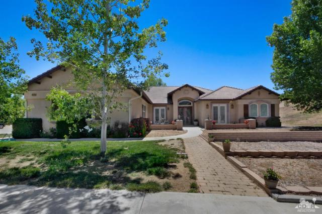60266 Hop Patchspring Road, Mountain Center, CA 92561 (MLS #218016818) :: The John Jay Group - Bennion Deville Homes
