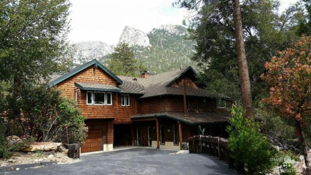 54790 Forest Haven Drive, Idyllwild, CA 92549 (MLS #218017790) :: Hacienda Group Inc