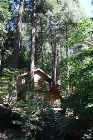 625 Cottage Grove Road, Lake Arrowhead, CA 92352 (MLS #218019366) :: Hacienda Group Inc