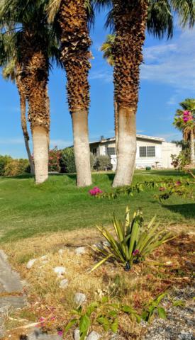 15500 Bubbling Wells Road #306, Desert Hot Springs, CA 92240 (MLS #218020918) :: The John Jay Group - Bennion Deville Homes
