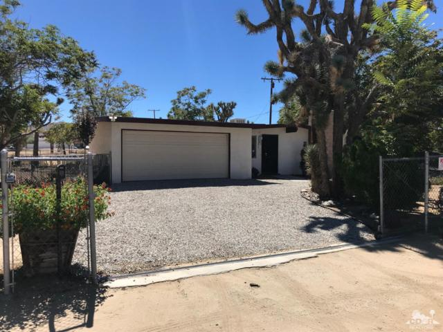 56505 Antelope Trail, Yucca Valley, CA 92284 (MLS #218030190) :: Team Wasserman