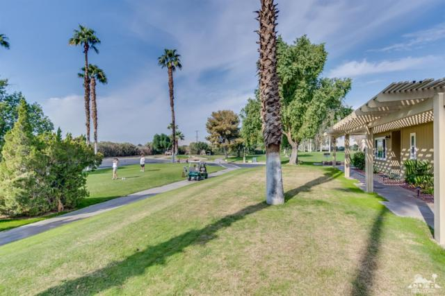 35248 Bandana Circle, Thousand Palms, CA 92276 (MLS #218032138) :: Team Wasserman