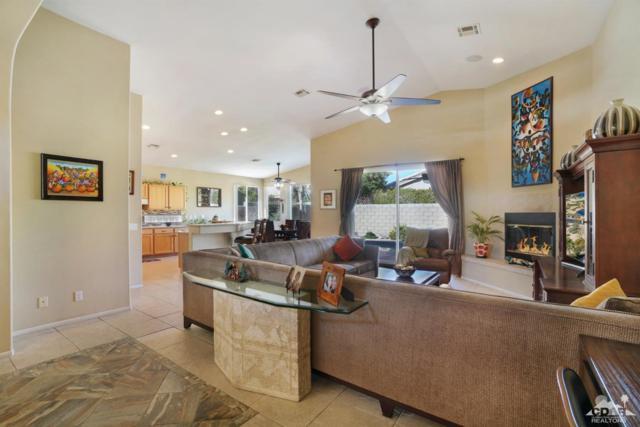 79538 Dandelion Drive, La Quinta, CA 92253 (MLS #218033436) :: Brad Schmett Real Estate Group
