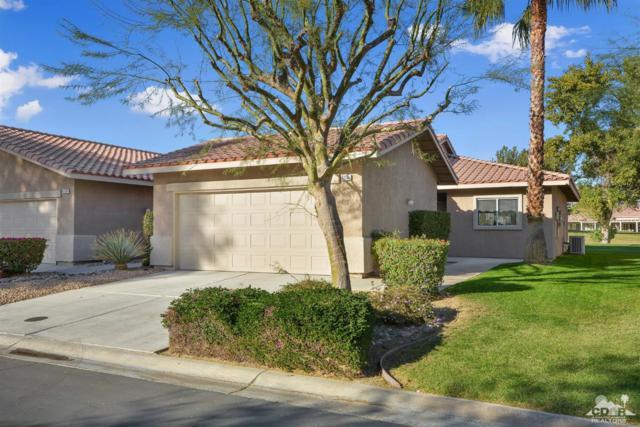 82384 Lancaster Way, Indio, CA 92201 (MLS #218033562) :: Brad Schmett Real Estate Group