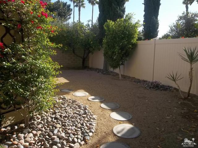 1261 Sunflower Lane, Palm Springs, CA 92262 (MLS #218034968) :: The Sandi Phillips Team
