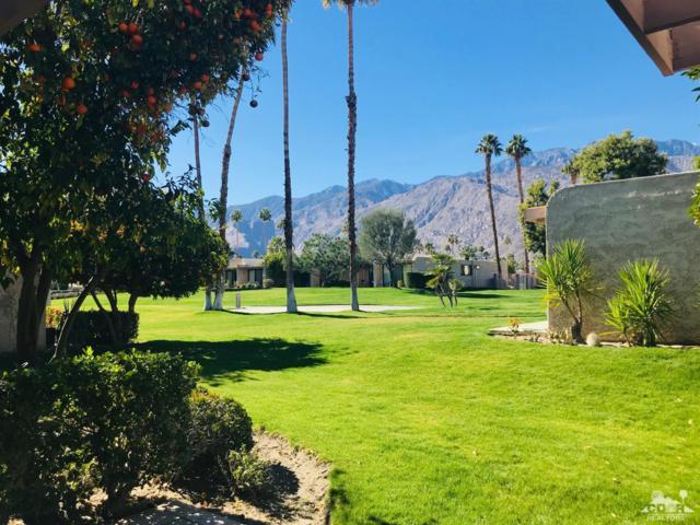 891 N Cerritos Drive, Palm Springs, CA 92262 (MLS #219001893) :: Brad Schmett Real Estate Group