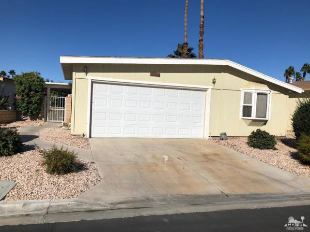 74572 Stage Line Drive, Thousand Palms, CA 92276 (MLS #219002509) :: Deirdre Coit and Associates