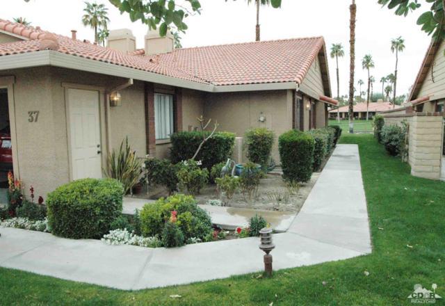 37 Maximo Way, Palm Desert, CA 92260 (MLS #219005109) :: Brad Schmett Real Estate Group