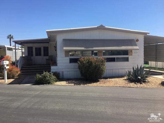 395 Wolf Lane, Cathedral City, CA 92234 (MLS #219010993) :: Deirdre Coit and Associates