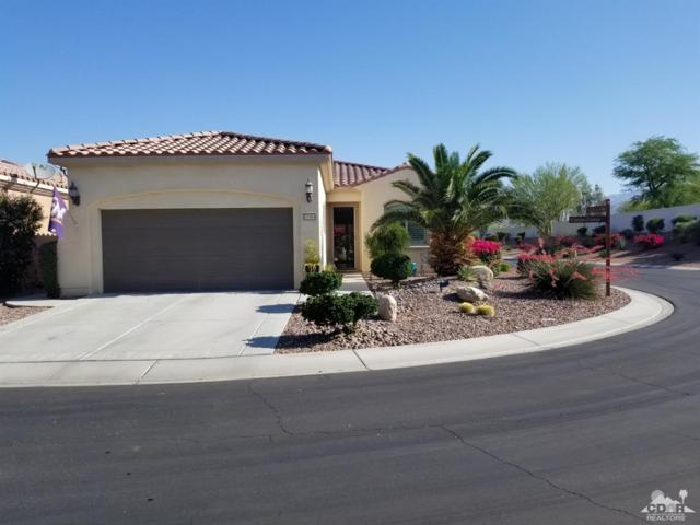 81964 Camino Cantos, Indio, CA 92203 (MLS #219014051) :: The Jelmberg Team