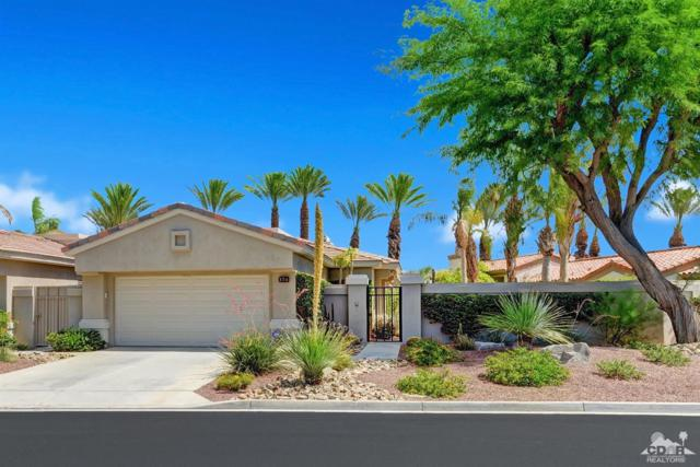 374 Desert Holly Drive, Palm Desert, CA 92211 (MLS #219015405) :: The John Jay Group - Bennion Deville Homes