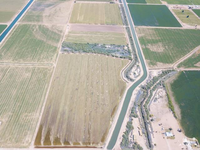 0 104 Water Toll Acres Boulevard, Blythe, CA 92225 (MLS #219015447) :: The John Jay Group - Bennion Deville Homes