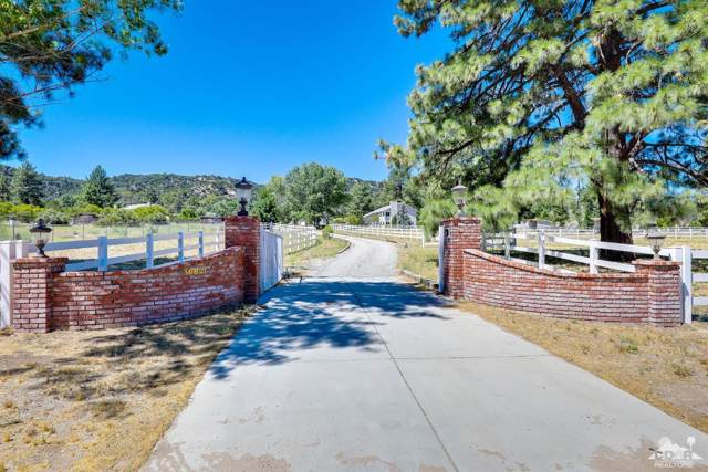 36621 Lion Peak Road, Mountain Center, CA 92561 (MLS #219019065) :: Deirdre Coit and Associates
