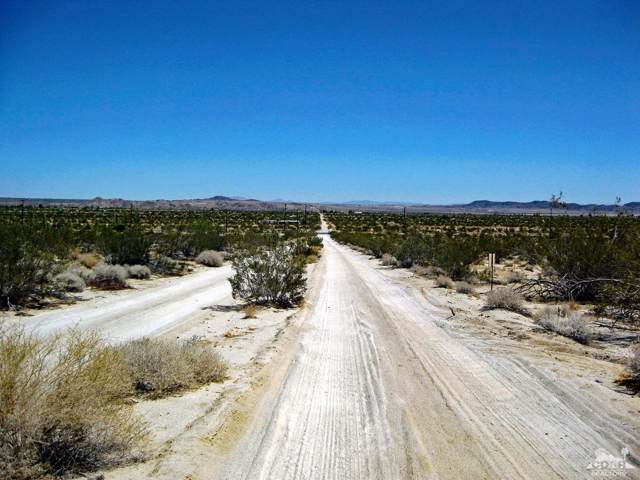 0 Hollinger Road, Joshua Tree, CA 92252 (MLS #219021913) :: Brad Schmett Real Estate Group