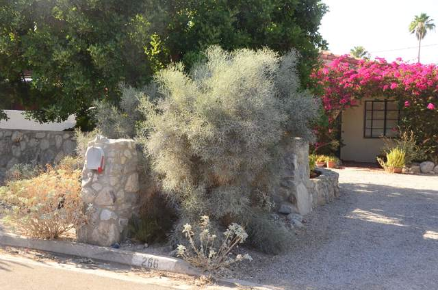 266 E Palo Verde Avenue, Palm Springs, CA 92264 (MLS #219031414) :: Brad Schmett Real Estate Group