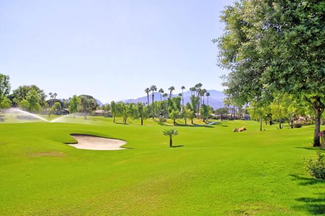 134 Deer Spring Way, Palm Desert, CA 92211 (MLS #219031944) :: The Sandi Phillips Team