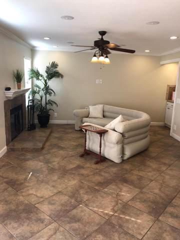 43376 Cook Street, Palm Desert, CA 92211 (MLS #219033295) :: Brad Schmett Real Estate Group