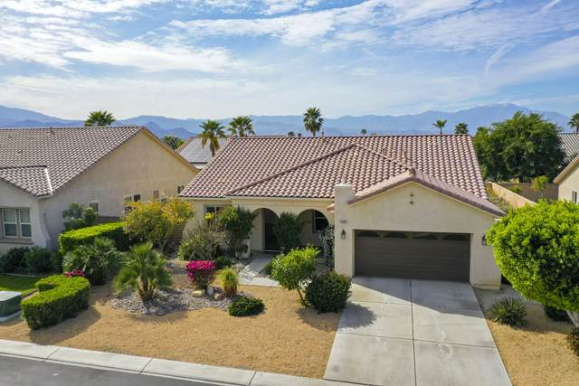 41367 Endicott Court, Indio, CA 92203 (MLS #219039281) :: Brad Schmett Real Estate Group