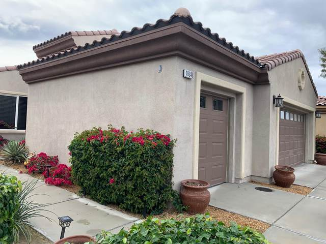 49849 Maclaine Street, Indio, CA 92201 (MLS #219040565) :: The Sandi Phillips Team