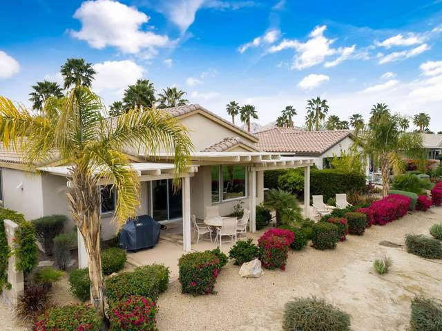 60400 Desert Rose Drive, La Quinta, CA 92253 (MLS #219040579) :: The Sandi Phillips Team