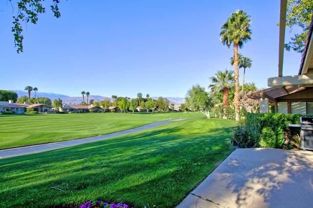 231 Green Mountain Drive, Palm Desert, CA 92211 (MLS #219040826) :: The Sandi Phillips Team