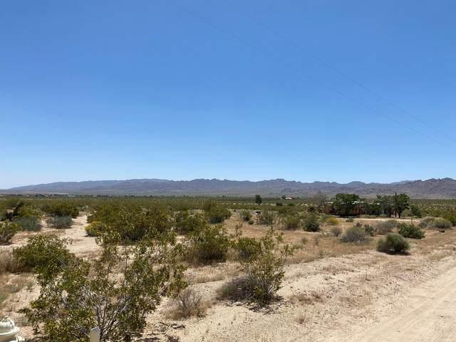 4817 Border Avenue, Joshua Tree, CA 92252 (MLS #219042757) :: Brad Schmett Real Estate Group