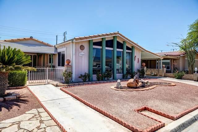 33680 Bell Road, Thousand Palms, CA 92276 (#219043253) :: The Pratt Group