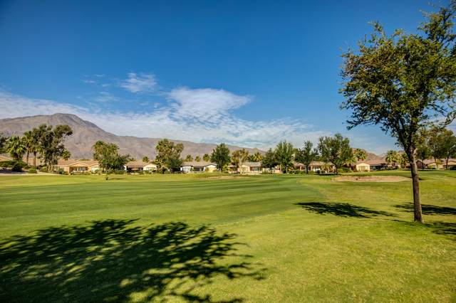 81213 Red Rock Road, La Quinta, CA 92253 (MLS #219043436) :: Brad Schmett Real Estate Group