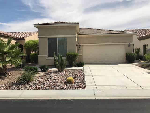 81564 Avenida Viesca, Indio, CA 92203 (MLS #219044985) :: Brad Schmett Real Estate Group