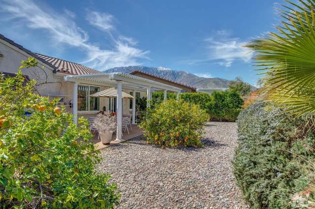 1898 Savanna Way, Palm Springs, CA 92262 (MLS #219045089) :: Brad Schmett Real Estate Group