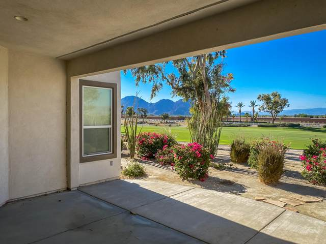 81290 Barrel Cactus Road, La Quinta, CA 92253 (MLS #219045566) :: The Sandi Phillips Team