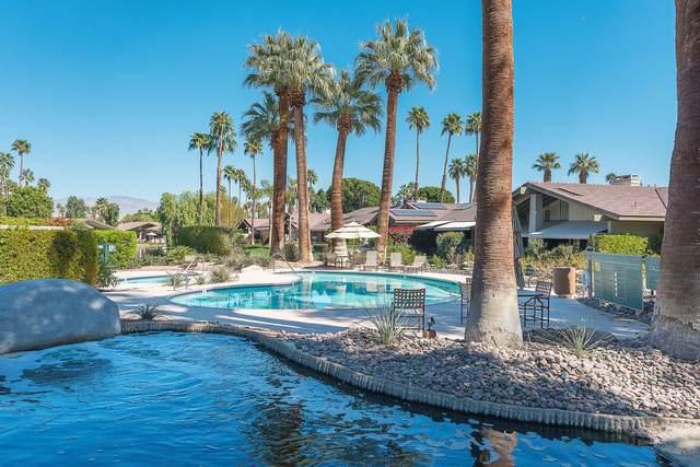 254 Wild Horse Drive, Palm Desert, CA 92211 (MLS #219045896) :: The Sandi Phillips Team