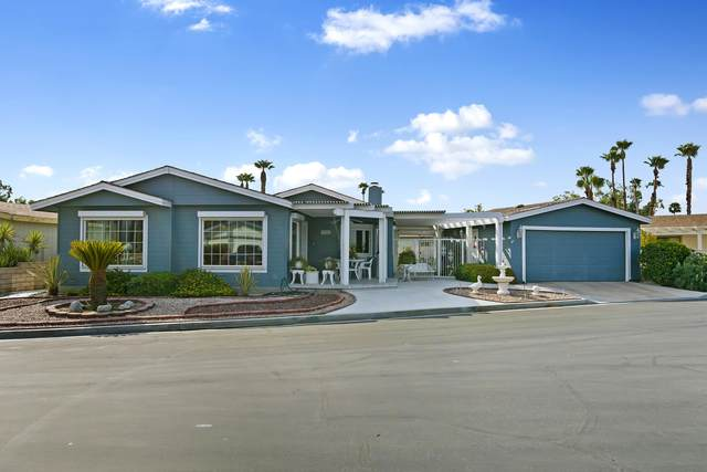 74631 Bellows Road, Thousand Palms, CA 92276 (MLS #219047670) :: The John Jay Group - Bennion Deville Homes