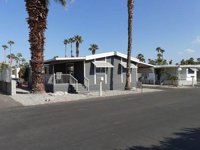 339 Sand Creek Creek, Cathedral City, CA 92234 (MLS #219048387) :: The Jelmberg Team