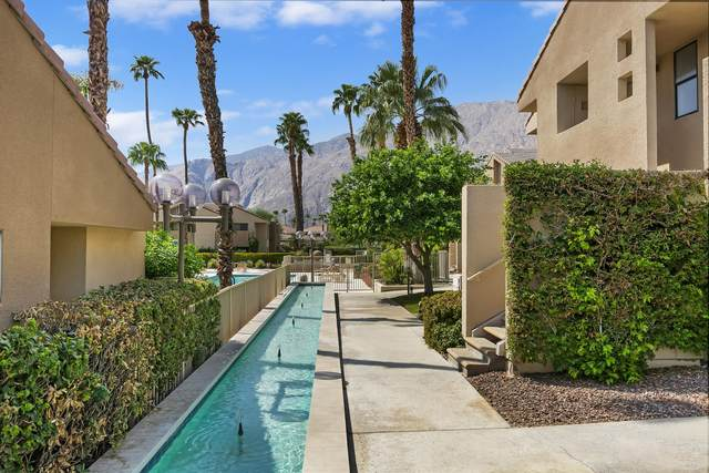 222 N Calle El Segundo, Palm Springs, CA 92262 (MLS #219049702) :: Mark Wise | Bennion Deville Homes