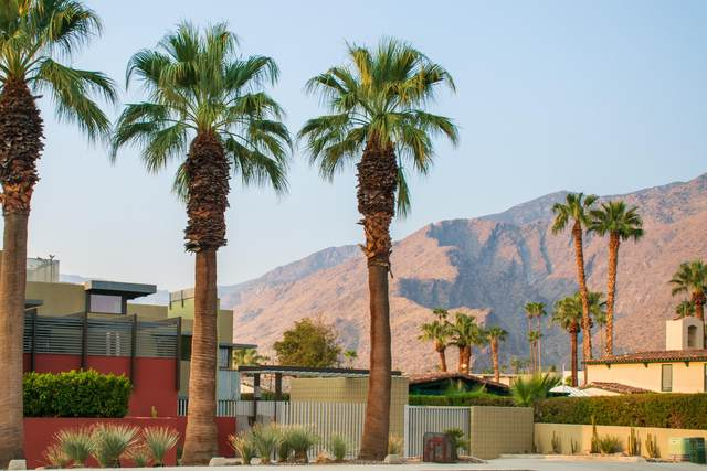 649 E Arenas, Palm Springs, CA 92262 (MLS #219049829) :: The John Jay Group - Bennion Deville Homes