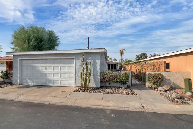 81641 Avenue 48 #6, Indio, CA 92201 (MLS #219049897) :: The Jelmberg Team