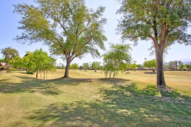 221 Bouquet Canyon Drive, Palm Desert, CA 92211 (MLS #219049963) :: The John Jay Group - Bennion Deville Homes
