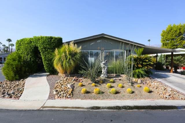 280 Coble Drive, Cathedral City, CA 92234 (MLS #219050423) :: The Jelmberg Team