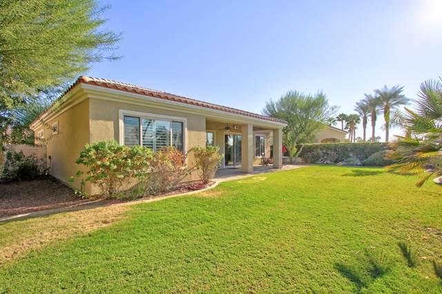 40445 Camino Montecito, Indio, CA 92203 (MLS #219051093) :: Brad Schmett Real Estate Group