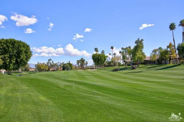 317 Appaloosa Way, Palm Desert, CA 92211 (MLS #219051842) :: The Sandi Phillips Team