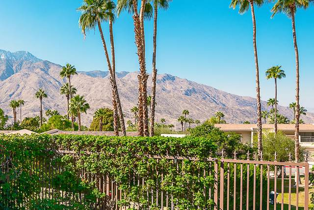 3622 E Bogert Trail, Palm Springs, CA 92264 (MLS #219051887) :: Mark Wise | Bennion Deville Homes